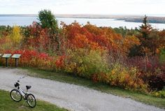 Mackinac Island - can only use bikes to get around - NO cars allowed on the entire island! <3 heaven
