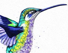 Hummingbird Watercolour - Original Print