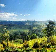 The rolling green hills of Mungalli Creek Dairy. Queensland, Australia. Photo: Sera_loves_crocs