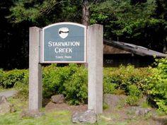 Starvation Creek Trailhead - Hiking in Portland, Oregon and Washington Portland Hikes, Portland Oregon, Field Guide, Pacific Northwest, North West, State Parks, Things To Do, Washington, Hiking