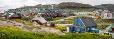 Dog, Qaqortoq, Greenland