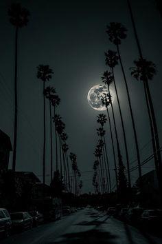 "plasmatics-life: "" L.A. Night ~ By Timo Saarelma """
