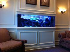 35 Inspiring Custom Built In Aquarium Setup Yourpetclip Viral .