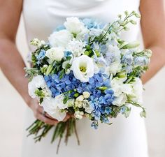 less white & dark blue, more softer & lighter blue hydrangea