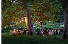 modern-fairytale-wedding-ideas - Once Wed Forest Party, Forest Wedding, Woodland Wedding, Garden Wedding, Rustic Wedding, Wedding Simple, Wedding Blue, Tree Wedding, Elegant Wedding