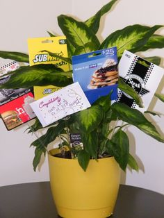 Gift Card Tree-so much better than an envelope
