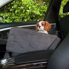 Let your pet travel in first-class luxury with our Animals Matter  Companion Pet Car Seat wrapped in a padded rhino suede. This patented car seat keeps your dog safe and secure while still being able to see the sights. Molded contours to fit your vehicleCustomized grooves allow a lap belt to securely surround the front and a shoulder belt to buckle on the sideClip in back for stabilityPet harness claspDense upholstery foamMade in USA.