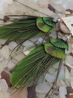 SQuiDDiE, peacock green feather earrings with fine silver over copper wire…