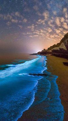 Beautiful Nature Pictures, Beautiful Nature Scenes, Amazing Nature, Full Moon Pictures, Ocean Pictures, Ocean At Night, Kobe Bryant Pictures, Cute Wild Animals, Ocean Wallpaper