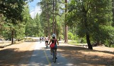 Bicycling in Yosemite National Park