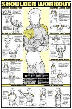 Shoulder Workout, workout your shoulders, toned shoulders, sexy shoulders,