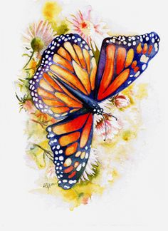 Watercolor Drawings Of Butterflies | Limited Expressions: Watercolor Paintings