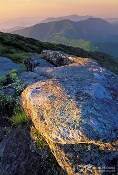 Grassy Ridge - Roan Mountain Highlands, Pisgah National Forest, NC ... crossed by the Appalachian Trail --- by Kevin Adams on Flickr