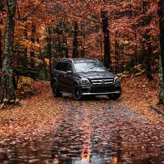 Mercedes Benz GL550. The athletic GL550 is the perfect tour guide for a leaf peeping journey across all terrains.