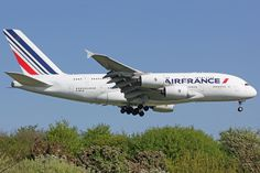 Airbus Air France F-hpje Birds In The Sky, Airline Logo, Airbus A380, Air Planes, Commercial Aircraft, Air France, Big Bird, Gliders, Totoro