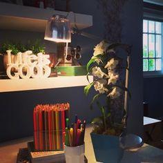 Bom dia segunda! Na bancada de trabalho muito lápis de cor pra colorir a semana. #casaecia #casaeciatv #escritório