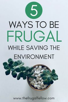 5 Ways to Be Frugal While Saving the Environment! The environment is very important. And being frugal can actually help protect it. Start saving money today and the world around you! Save Money On Groceries, Ways To Save Money, Money Tips, Money Saving Tips, How To Make Money, Money Budget, Groceries Budget, Frugal Living Tips, Frugal Tips