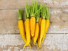 Amarillo Carrots - Lovely, lemon-yellow carrots have sweet, bright yellow flesh. Good for a summer to fall crop; Growing Vegetables, Fruits And Vegetables, Red Carrot, Cabbage Seeds, Cucumber Seeds, Carrot Seeds, Pepper Seeds, Organic Seeds, Garden Seeds