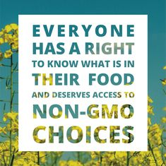 This basic tenet is one of the seven belief statements that support the Non-GMO Project's mission of preserving and building sources of non-GMO products, educating consumers, and providing verified non-GMO choices.