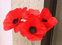 The Catelier - amintiri pentru 9 vieti Buchet de maci Maci, Crepe Paper Flowers Tutorial, Plants, Planters, Plant, Planting