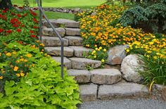 Stone garden staircase with beautiful summer flowers Flagstone Walkway, Landscape Steps, French Exterior, Stone Stairs, Rose Vines, Garden Steps, Terrace Garden, Gras, Edible Garden