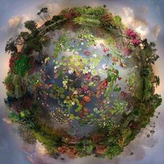 """You carry Mother Earth within you. She is not outside of you. Mother Earth is not just your environment. In that insight of inter-being, it is possible to have real communication with the Earth, which is the highest form of prayer."" ― Thich Nhat Hanh"