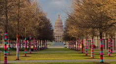 Austin, Texas, 2011, KnittaPlease display.   photo by  Shawn Thomas.