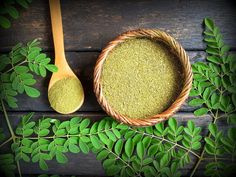 5 Reasons You Need Moringa In Your Diet