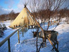 Kirkenes Norway Viking, Kirkenes, Scandinavian Countries, Arctic Circle, North Sea, Day Tours, Winter Wonderland, Denmark, Northern Lights