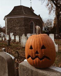 35 Top Pumpkin Carving Ideas For Halloween – Page 35 – Small Flash Casa Halloween, Halloween Season, Halloween Horror, Halloween Town, Holidays Halloween, Vintage Halloween, Halloween Decorations, Halloween Pumpkins, Halloween Makeup