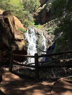 Drizzles domain: Walter Sisulu Botanical Gardens