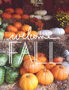 Fall events in Henderson, NV. Learn more about upcoming community events, festivals and Halloween happenings. The Sales Team, Keller Williams.