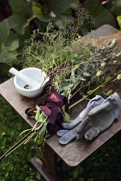 Herbs from the Garden Culture D'herbes, Kitchen Witch, Healing Herbs, Plantar, Potpourri, Garden Inspiration, Vignettes, Vegetable Garden, Garden Tools