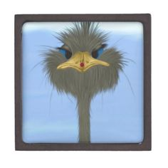 George And His Visitor Medium Premium Trinket Box. Created by #OneArtsyMomma  $27.95 #Ostrich #Ladybug #Safari