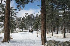 Family Fun Adventure: Bryce Canyon National Park
