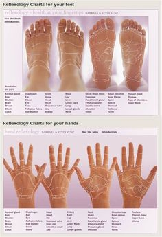 Interactive Reflexology Charts : this link has interactive reflexology charts for both the feet and hands, if you scroll your mouse over the areas on the chart you will see where to apply pressure to improve blood flow and healing to those areas... great site!