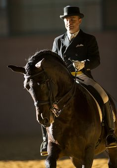 Andalusian versus warmblood as a modern dressage horse. Let's look at what makes the Spanish horse superior in every way! Welcome to discuss!