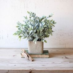 """Bring this faux sage bush into your home to add a subtle pop of color and texture. Goes great for any space in your home. come in a square cube pot. 10"""" x 12"""""""