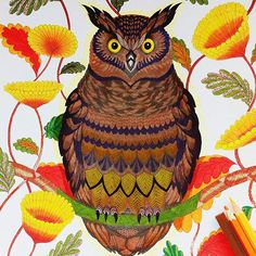 Book Tropical Wonderland By Milliemarotta