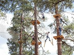 The Flagstaff Extreme Adventure Course ~ complete with rope swings, tunnels, bridges, and of course, a zip line finish.  It's AWESOME!