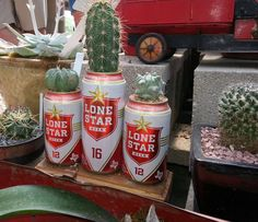 Lone Star cans + cactus Succulent Gardening, Cacti And Succulents, Cactus E Suculentas, Grandmas Garden, Joshua Tree Wedding, Texas Star, Arts And Crafts, Diy Crafts, Brewing Co