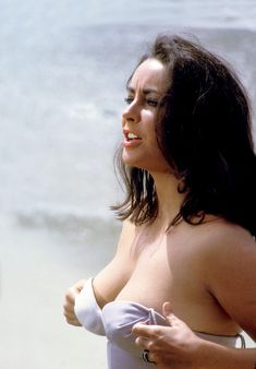 Elizabeth Taylor — Elizabeth Taylor, Richard Burton, Charles Bronson,...