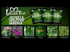 Iaso tea is the core product in a weight loss system that works with what you drink to lose weight....