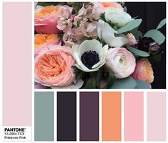 PANTONE 12-2904 Primrose Pink - combination