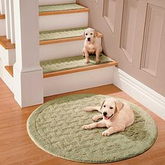 Finished Carpet Stair Treads   Tread Sets For Stairs   Carpet Treads |  Decorating | Pinterest | Carpets, Carpet Stair Treads And Stair Treads