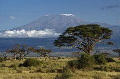 mount kilimanjaro - Google Search