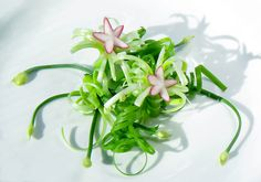 Green Onion Curls for Garnish Food Carving, Food Garnishes, Food Decoration, World Recipes, Green Onions, Meals For One, I Love Food, Curls, Healthy Recipes
