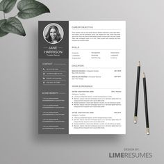 Premium resume templates by LimeResumes