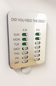 This is a shizzlin' idea! Did You Feed The Dog? Solution www. - Pet Friendly Home - This is a shizzlin' idea! Did You Feed The Dog? Solution www. Dog Rooms, Ideas Geniales, Fur Babies, Diy Home Decor, Diy Projects, House Design, How To Plan, Cool Stuff, Pets
