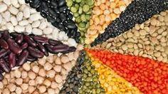 Fagioli, piselli e ceci: così con i legumi sfameremo il mondo